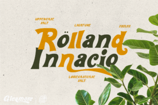 Print on Demand: Gleamore Display Font By glyphstyle 2