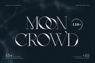 Print on Demand: Moon Crowd Serif Font By SilverStag