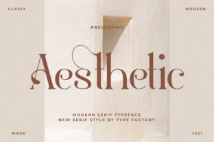 Print on Demand: Aesthetic Serif Font By TypeFactory