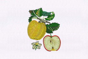 Golden Apple Fruit Food & Dining Embroidery Design By StitchersCorp