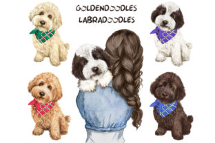 Dogs Clipart, Goldendoodle, Labradoodle Graphic Add-ons By EvArtPrint