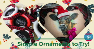 Christmas Ornaments That are Cheap and Easy to Make