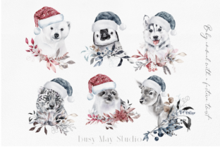 Print on Demand: Christmas Baby Animals Penguin Seal PNG Graphic Illustrations By Busy May Studio 4