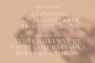 Print on Demand: Levaus Serif Font By Graphicxell 15