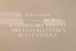 Print on Demand: Levaus Serif Font By Graphicxell 16