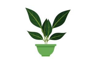Print on Demand: Plant Flowers at Home Svg Graphic Illustrations By Conarsa Studio