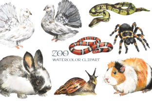 Pets Watercolor Clipart. Zoo Market Graphic Add-ons By EvArtPrint