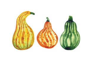 Watercolor Gourds in Different Shapes Food & Drinks Craft Cut File By Creative Fabrica Crafts