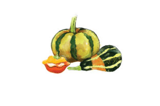 Watercolor Gourds Food & Drinks Craft Cut File By Creative Fabrica Crafts