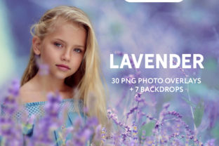 30 Lavender Photo Overlays Graphic Actions & Presets By PhotoEffects.Store