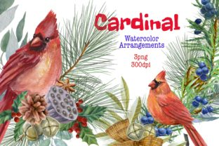 Print on Demand: Christmas Watercolor Clipart,cardinal Graphic WordPress By Marine Universe