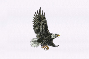Feather Detailed Eagle Birds Embroidery Design By StitchersCorp