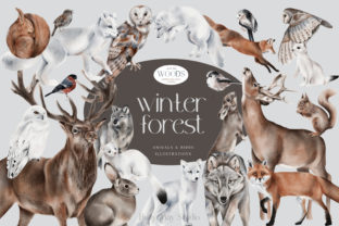 Print on Demand: Winter Forest Animals and Birds PNG Graphic Illustrations By Busy May Studio