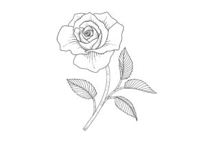 Print on Demand: Hand Drawn Line Art Flower Coloring Page Graphic Coloring Pages & Books By craftshop