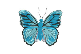 Butterfly Bugs & Insects Embroidery Design By Alistudio