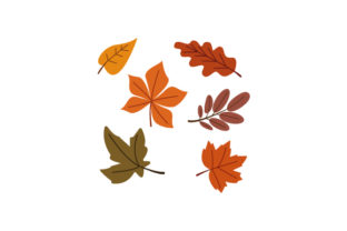 Fall Leaves Set Nature & Outdoors Craft Cut File By Creative Fabrica Crafts