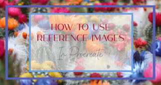 How to Use Reference Images in Procreate