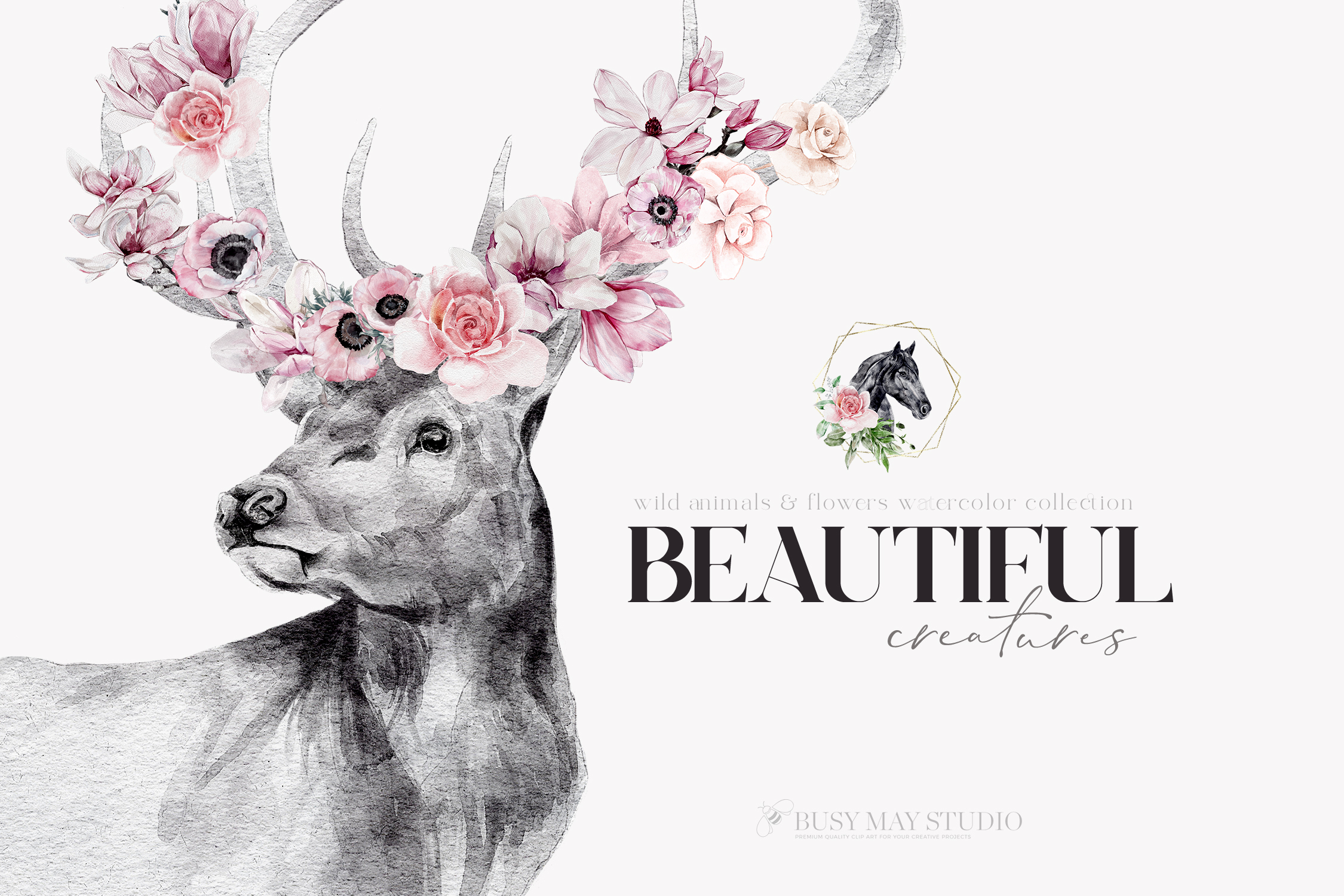 Watercolor Animal Portraits and Flowers