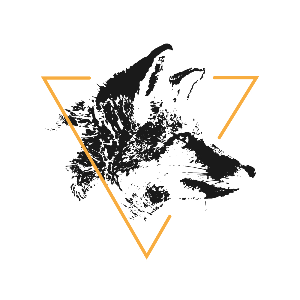The Gradient Fox's profile picture