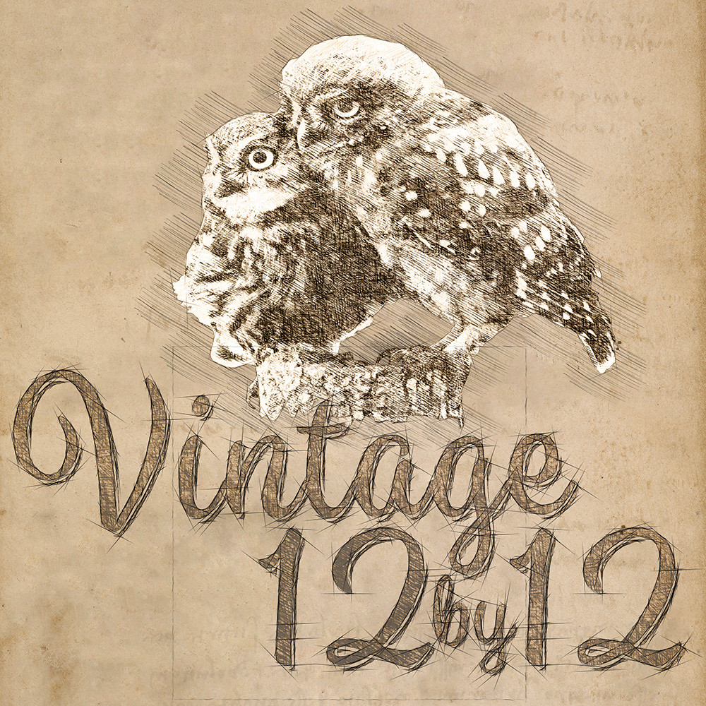 Vintage 12by12's profile picture